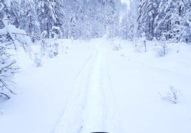 Kainuun syvän lumen kelkkailualueet  Puolangan Paljakassa ja Kuhmon itärajalla ovat auki